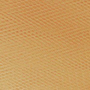 Nylon Dress Net in Gold - William Gee